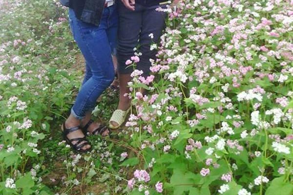 Hình ảnh cô gái xinh đẹp phi xe máy qua vườn hoa cải gây bức xúc - Ảnh 5.