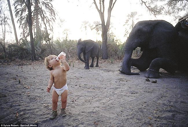 Cuộc sống của cô bé rừng xanh ngoài đời thật, làm bạn với voi châu Phi và chơi cùng báo - Ảnh 3.
