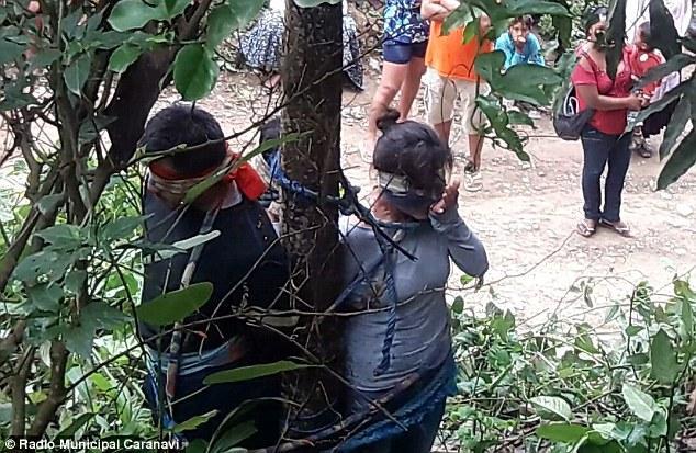 Bị nghi đánh cắp xe ô tô, người phụ nữ bị trói vào cây có đầy kiến độc, bị kiến cắn chết - Ảnh 1.