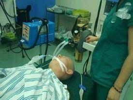 Mẹ cạo đầu, lột da để cứu con trai 2 tuổi bị bỏng nặng vì ngã vào nồi nước sôi