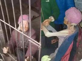 Nhốt mẹ già 92 tuổi vào chuồng lợn, đánh đập cặp vợ chồng bị dư luận ném đá