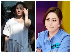 """Chung Hân Đồng lộ ảnh vào khách sạn với """"bản sao Trần Vỹ Đình"""""""