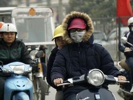 Mùa Đông ở miền Bắc có biến mất trong vài năm tới?