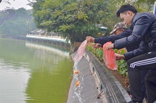 Tha ca chep ngay 23 thang Chap: Phong sinh hay sat sinh?