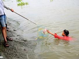 Bơi nhảy bắt cá chép Táo quân trên sông Sài Gòn