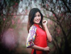 Thiếu nữ Việt duyên dáng áo dài chụp ảnh hoa đào ngày Tết