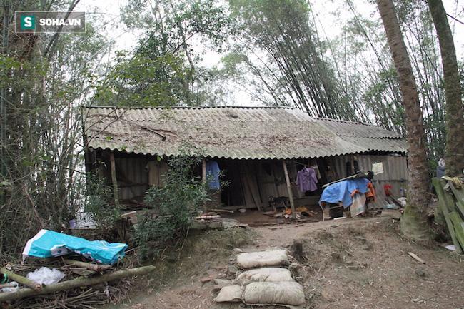 Đôi vợ chồng sống 50 năm trong lùm tre ở Nghệ An: Nuôi được mấy con gà mà không dám ăn - Ảnh 2.