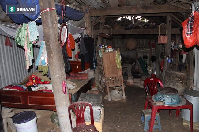 Đôi vợ chồng sống 50 năm trong lùm tre ở Nghệ An: Nuôi được mấy con gà mà không dám ăn - Ảnh 3.