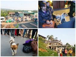 Hình ảnh xấu xí của bạn trẻ ở ngôi chùa nơi Sơn Tùng quay MV