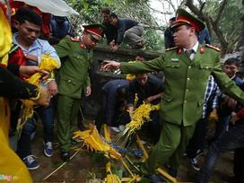 Tranh cướp hoa tre tại hội Gióng