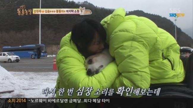 2 tháng sau ngày chú chó cưng qua đời, phép màu đã đến với cặp vợ chồng nghệ sĩ Hàn - Ảnh 2.