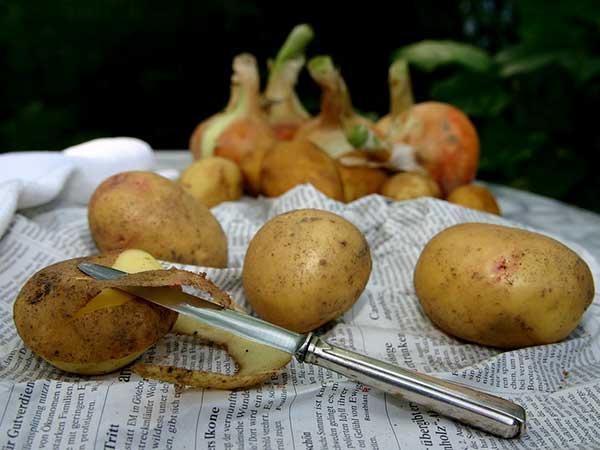 lợi ích của vỏ khoai tây