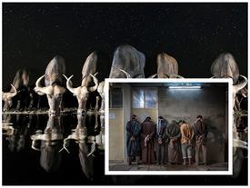 Khoảnh khắc ấn tượng từ cuộc thi Nhiếp ảnh thế giới 2017