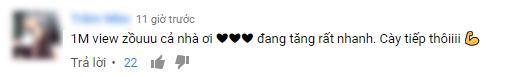 Những lời khen đã xưa rồi, giờ cày view mới là xu hướng comment hot nhất của các Vpop fan - Ảnh 12.