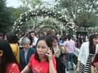 Lễ hội Hoa hồng thông báo ngừng bán vé cho khách từ ngày 5/3