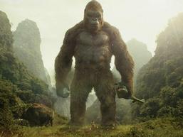 Hãy xem 'Kong: Skull Island' để thấy Việt Nam đẹp đến thế nào