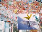 Trường Lương Thế Vinh đẹp như cổ tích với hàng nghìn con hạc giấy gửi đến thầy Văn Như Cương