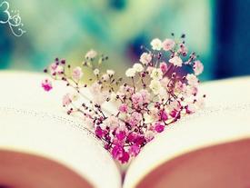 Muốn hạnh phúc hãy học cách sống vô tư