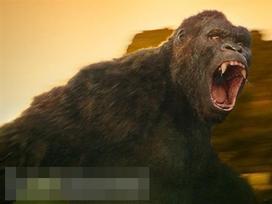 'Kong: Skull Island' nối dài kỷ lục doanh thu tại Việt Nam với 104 tỷ đồng sau tuần đầu công chiếu