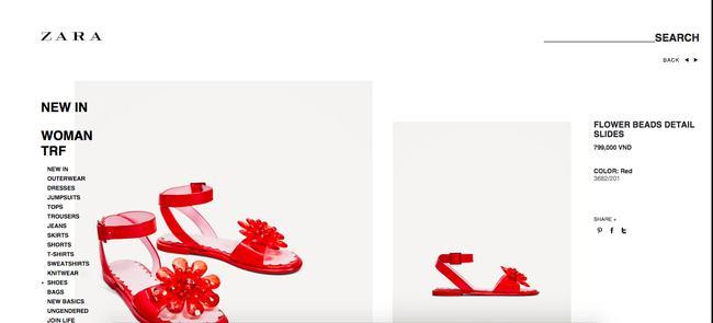 Sau dép lau nhà, Zara lại ra đôi dép nhựa hoa đỏ order về thể nào cũng khóc thét - Ảnh 3.