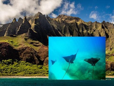 16 bức ảnh khiến bạn muốn bay đến Hawaii ngay lập tức