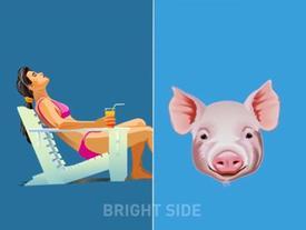 Sự giống nhau kỳ lạ giữa con người và động vật