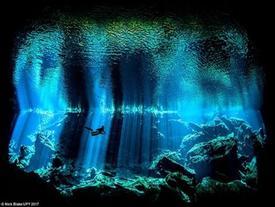 Những khám phá đáng kinh ngạc dưới đáy đại dương