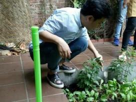 Bị khách vứt rác vào vườn rau sạch, Trường Giang lụi cụi khiến nhân viên cảm động