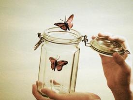 Chẳng có nỗi buồn nào giống nhau, trưởng thành là khi biết cách từ bỏ
