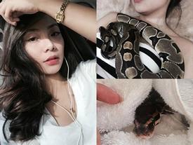 Cô giáo mầm non xinh đẹp thích ngủ chung với rắn