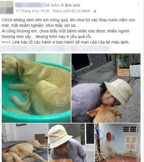 Giận hờn, nam thanh niên ở Sài Gòn tra tấn dã man chú chó của bạn để trả thù - Ảnh 1.