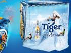 Những cái nhất của Bức tường Tiger 2017