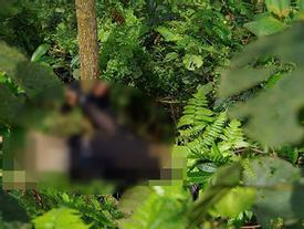 Tin hot trong ngày: 'Sát thủ nhí' 15 tuổi giết hại cô ruột, trói tay vào gốc cây