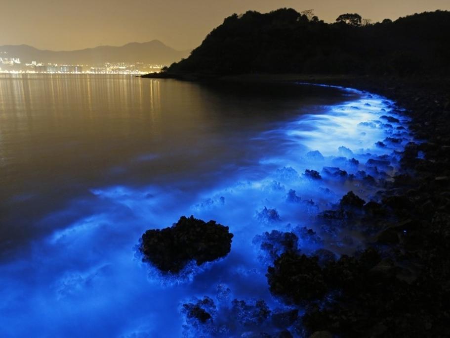 Ánh sáng xanh kỳ lạ bên bờ biển