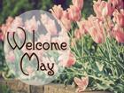 Dự báo tháng 5 ngập tràn niềm vui cho 12 con giáp