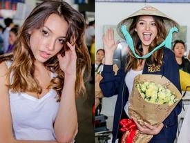 'Thánh nữ' bikini Celine Farach đến Việt Nam