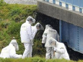 Gia đình bé gái bị sát hại ở Nhật Bản sốt ruột vì nghi phạm được thả rồi bị bắt lại