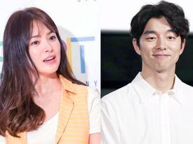 Chỉ bằng một câu nói, Song Hye Kyo bị cho là đang 'nhăm nhe' hẹn hò tài tử 'Yêu tinh' Gong Yoo