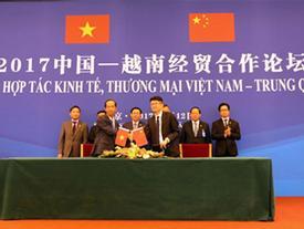 Vinamilk 'mở đường' xuất khẩu sữa sang Trung Quốc