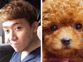 Facebook 24h: Trấn Thành 'câm nín' khi bị fan so sánh giống... cún