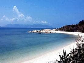 Trải nghiệm cuộc sống hoang dã trên đảo Cù Lao Câu