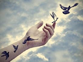 Yêu sai người nên chấp nhận buông tay