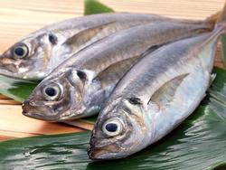 Bạn đã vứt cả núi chất dinh dưỡng vào sọt rác khi bỏ mấy phần siêu bổ mà lại siêu ngon này của cá
