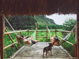 'Bắt sóng' ngay 3 homestay thiên nhiên xanh mát ở Ninh Bình để đi trốn mùa hè Hà Nội!