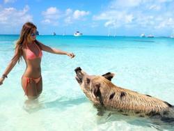 Mặc bikini đùa giỡn cùng đàn cá mập, cô gái xinh đẹp nhận cái kết kinh hoàng