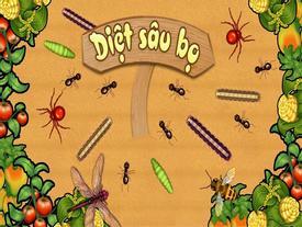 Quizz: Bạn đã hiểu hết về ngày Tết diệt sâu bọ?
