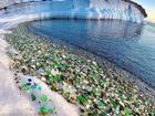 Bãi biển thủy tinh lấp lánh có nguy cơ biến mất
