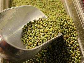 Mùa hè, ăn đậu xanh rất tốt: Ăn với 2 loại hạt này còn thanh nhiệt, giải độc, bổ khí huyết