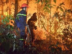 GĐ Sở nhận định nguyên nhân ban đầu 'vụ cháy rừng lớn nhất, lâu nhất trong lịch sử'
