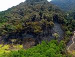 Tin hot trong ngày: 50 ha rừng tan hoang sau vụ cháy lịch sử ở Sóc Sơn